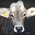 Brown Swiss by Michele Turney