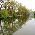Bruges Minnewater 1 by Randall Weidner