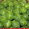 Brussel Sprouts by Michiale Schneider