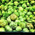 Brussels Sprouts by Carlos Avila