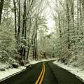 Bryan Point Road by Buddy Scott