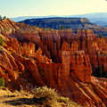 Bryce 3 by Marty Koch