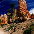 Bryce Canyon 10 by Art Ferrier