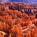 Bryce Canyon by Amanda Kiplinger