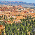 Bryce Canyon Fairyland Vista Point by Kyle Hanson