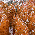 Bryce Canyon Hoodoos by Pierre Leclerc Photography