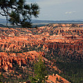 Bryce Canyon II by Susanne Van Hulst