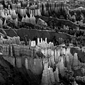 Bryce Canyon In Black And White by James BO  Insogna