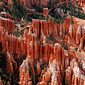 Bryce Canyon In Utah by Susanne Van Hulst