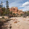 Bryce Canyon by Juli Scalzi