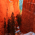 Bryce Canyon Sunrise Glow by Pierre Leclerc Photography