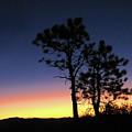 Bryce Canyon Sunrise by Helaine Cummins