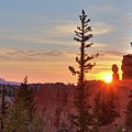 Bryce Canyon Sunrise by Jim Allsopp
