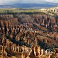 Bryce Canyon Utah by Toula Mavridou-Messer