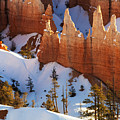 Bryce Canyon Winter 3 by Bob Christopher