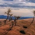 Bryce Landscape by Jim Cook
