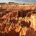 Bryce National Park by Chuck Kuhn