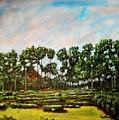 Btm Park by Usha Shantharam