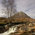 Buachaille Etive Mor by Colette Panaioti