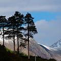 Buachaille Etive Mor From Glen Etive by John McKinlay
