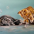 Bubble Cats by Tony Calleja