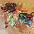 Bubbles  English Springer by Sherry Shipley