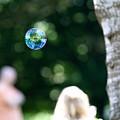 Bubbles by Roger Cobb