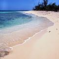 Buck Island Beach by Thomas R Fletcher