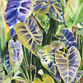 Bucket Of Purple Taro by Ileana Carreno