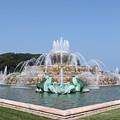 Buckingham Fountain by Lauri Novak