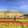 Buckingham Palace London Panorama by David Pyatt