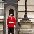 Buckingham Palace Yawn by KG Thienemann