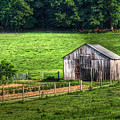 Bucolic Tobacco Barn 1 by E R Smith