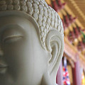 Buddha At Hsi Lai Temple by Michael Ziegler
