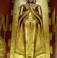 Buddha Figure 1 by Werner Padarin