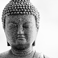 Buddha In Black And White by Edward Myers