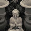 Buddha Iv Toned by David Gordon