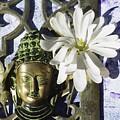 Buddha - Spring by Betty Pehme