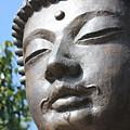 Buddha by Wilko Van de Kamp