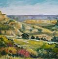 Buena Vista by William Reed