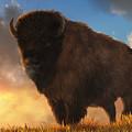 Buffalo At Dawn by Daniel Eskridge