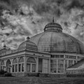 Buffalo Botanical Gardens #2229 by Guy Whiteley