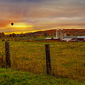 Buffalo Farm Sunset by Susan Candelario