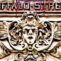 Buffalo Street by Robb Shaffer