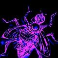 Bug 9 by Mark J Dunn