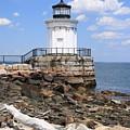 Bug Lighthouse by Doug Mills