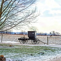 Buggy Alone In Winter by David Arment