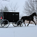 Buggy On Winter Road by David Arment
