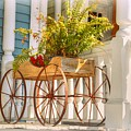 Buggy Planter by Linda Covino