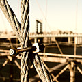 Building The Brooklyn Bridge by Alissa Beth Photography